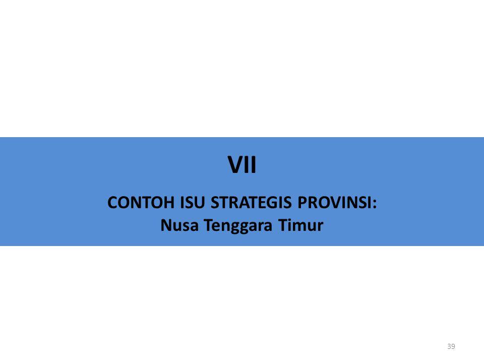 VII CONTOH ISU STRATEGIS PROVINSI: Nusa Tenggara Timur 39