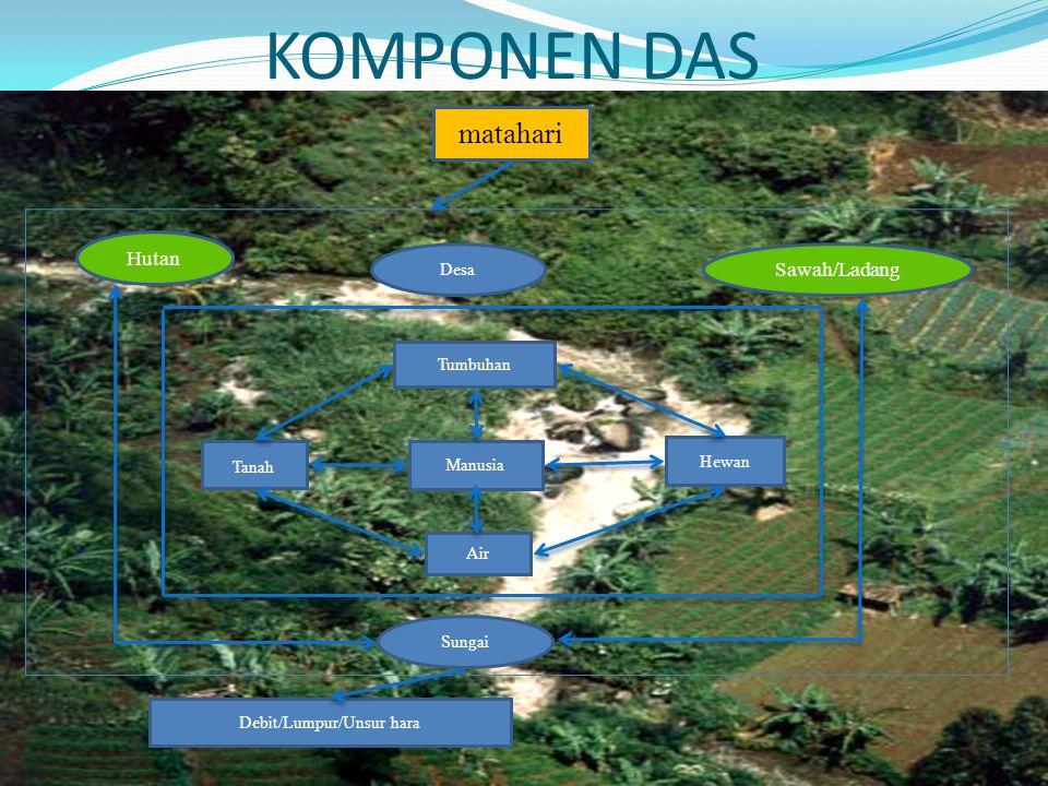 KOMPONEN DAS matahari Debit/Lumpur/Unsur hara Hutan Sungai Desa Sawah/Ladang Air Tumbuhan Hewan Tanah Manusia