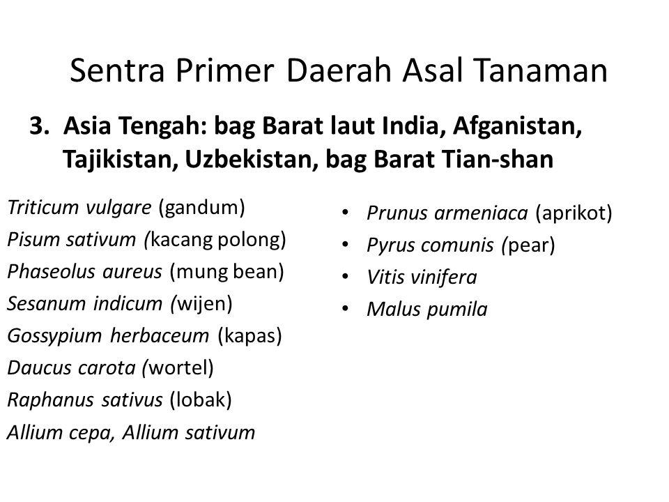 Sentra Primer Daerah Asal Tanaman 3. Asia Tengah: bag Barat laut India, Afganistan, Tajikistan, Uzbekistan, bag Barat Tian-shan Triticum vulgare (gand