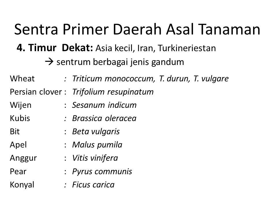 Sentra Primer Daerah Asal Tanaman 4. Timur Dekat: Asia kecil, Iran, Turkineriestan  sentrum berbagai jenis gandum Wheat:Triticum monococcum, T. durun