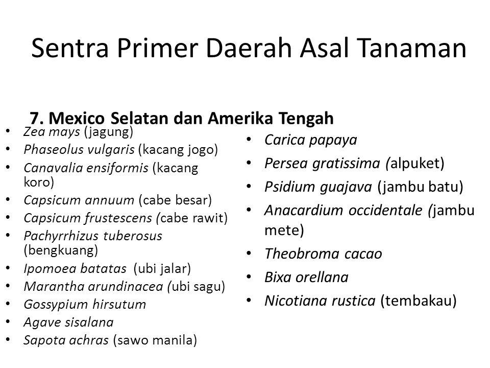 Sentra Primer Daerah Asal Tanaman 7. Mexico Selatan dan Amerika Tengah Zea mays (jagung) Phaseolus vulgaris (kacang jogo) Canavalia ensiformis (kacang