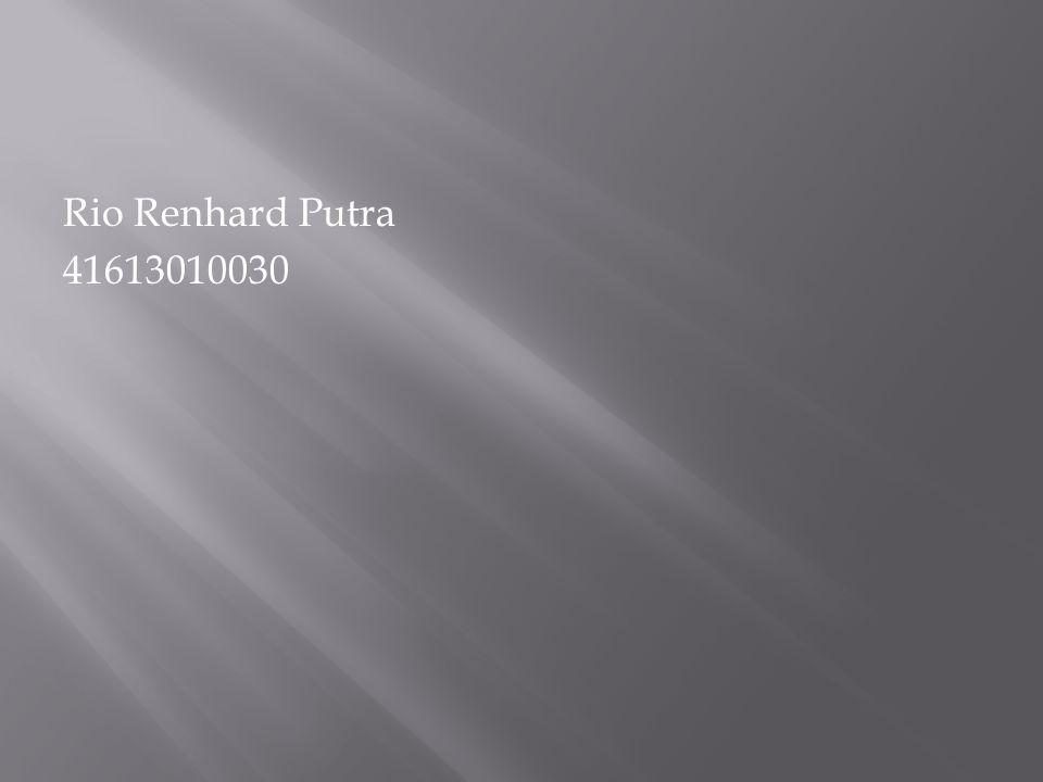 Rio Renhard Putra 41613010030