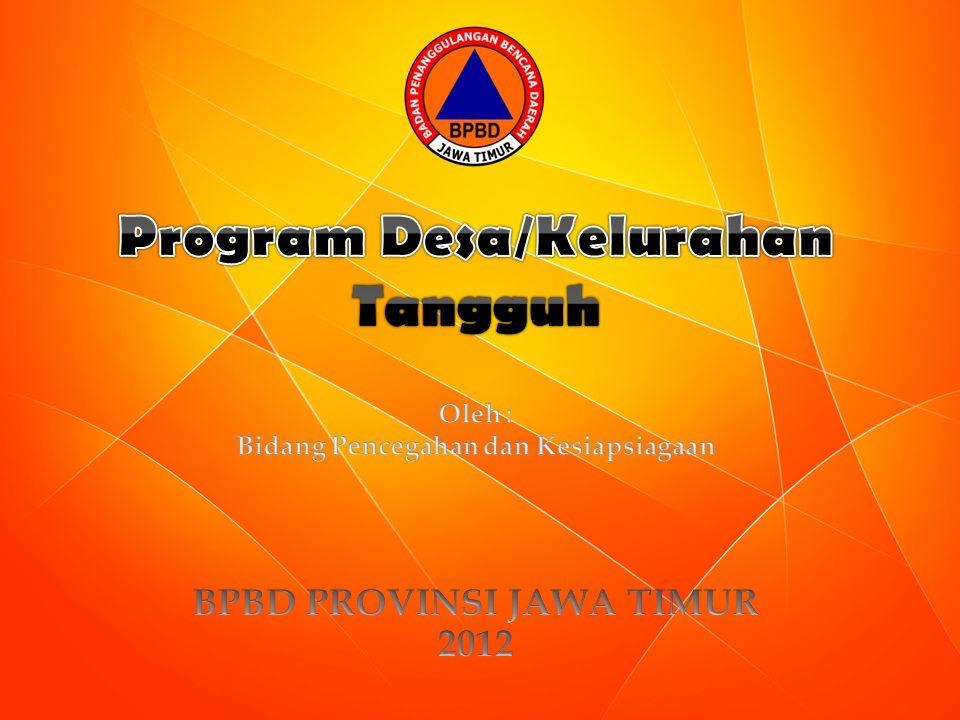 1.Persiapan / Perencanaan. a. Penetapan Program Desa Tangguh b.