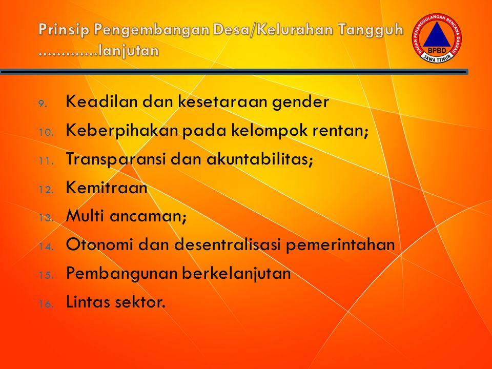 9. Keadilan dan kesetaraan gender 10. Keberpihakan pada kelompok rentan; 11. Transparansi dan akuntabilitas; 12. Kemitraan 13. Multi ancaman; 14. Oton