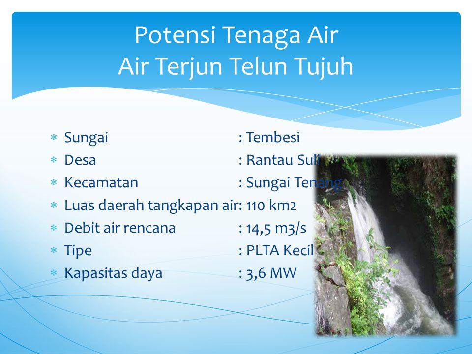  Sungai: Tembesi  Desa: Rantau Suli  Kecamatan: Sungai Tenang  Luas daerah tangkapan air: 110 km2  Debit air rencana: 14,5 m3/s  Tipe: PLTA Kecil  Kapasitas daya: 3,6 MW Potensi Tenaga Air Air Terjun Telun Tujuh