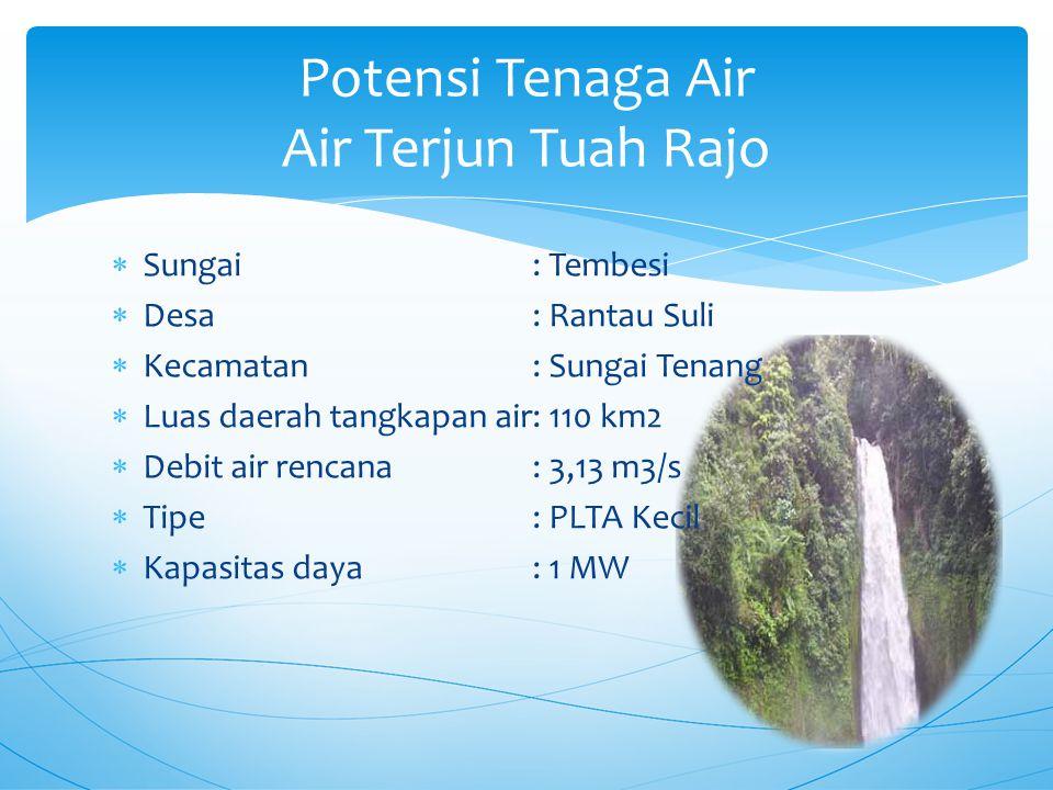  Sungai: Tembesi  Desa: Rantau Suli  Kecamatan: Sungai Tenang  Luas daerah tangkapan air: 110 km2  Debit air rencana: 3,13 m3/s  Tipe: PLTA Kecil  Kapasitas daya: 1 MW Potensi Tenaga Air Air Terjun Tuah Rajo
