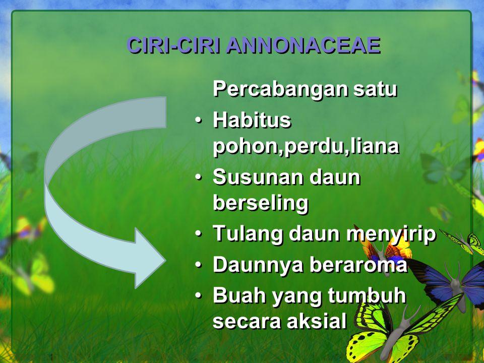 Annona muricata (sirsak) Kerajaan : Plantae Devisio : Magnoliophyta Kelas : Magnoliopsida Ordo : Magnoliales Familia : Amnonaceae Genus: Annona Spesies : Annona muricata