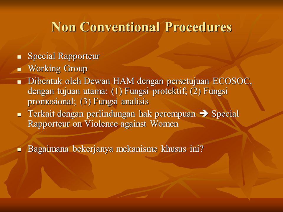 Non Conventional Procedures Special Rapporteur Special Rapporteur Working Group Working Group Dibentuk oleh Dewan HAM dengan persetujuan ECOSOC, denga