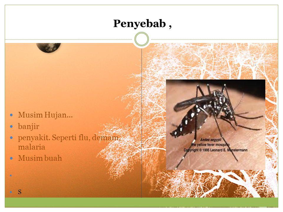 Penyebab, Musim Hujan... banjir penyakit. Seperti flu, demam, malaria Musim buah S
