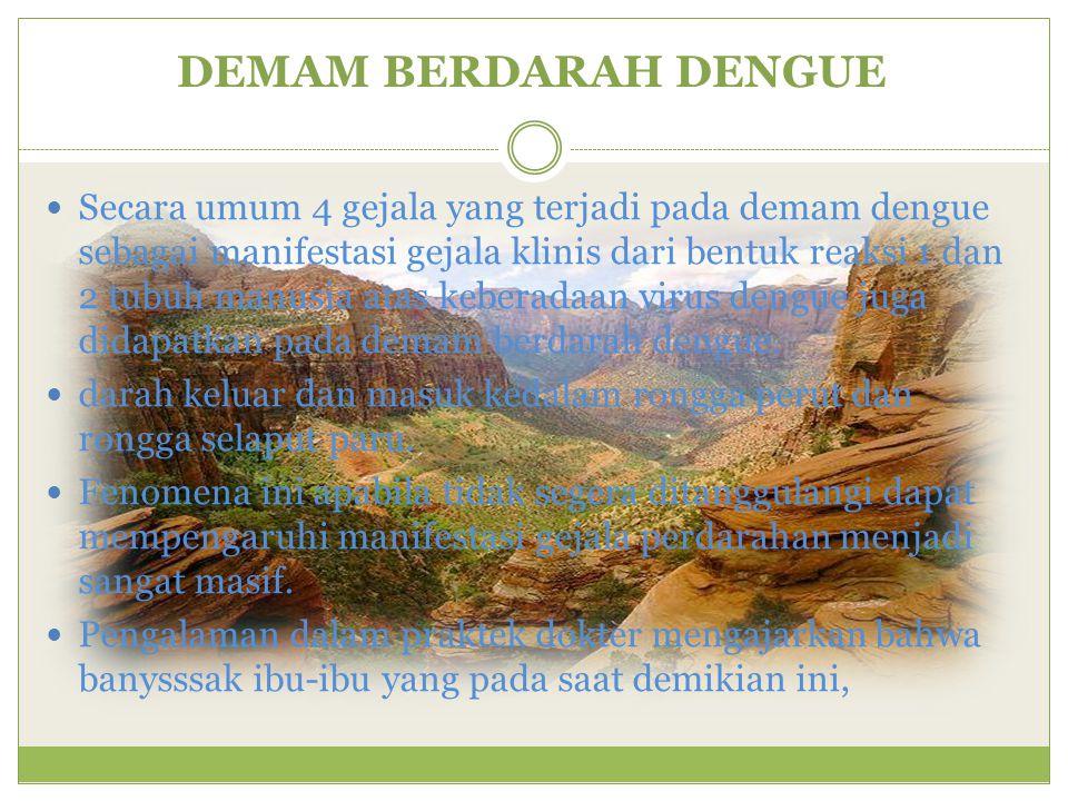 DEMAM BERDARAH DENGUE Secara umum 4 gejala yang terjadi pada demam dengue sebagai manifestasi gejala klinis dari bentuk reaksi 1 dan 2 tubuh manusia a