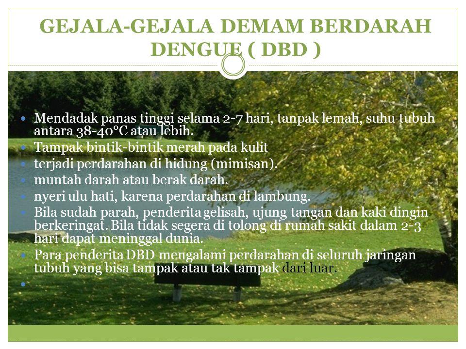CARA MENCEGAH DEMAM BERDARAH DENGUE ( DBD )