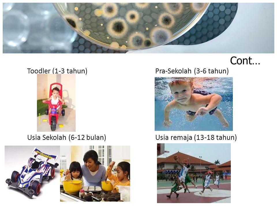 Cont… Toodler (1-3 tahun)Pra-Sekolah (3-6 tahun) Usia Sekolah (6-12 bulan)Usia remaja (13-18 tahun)