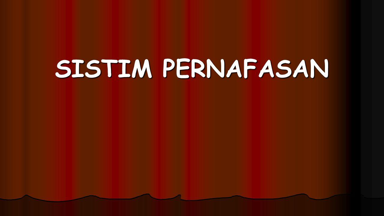 SISTIM PERNAFASAN