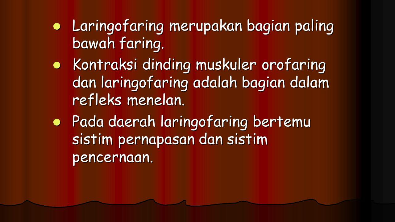 Laringofaring merupakan bagian paling bawah faring. Laringofaring merupakan bagian paling bawah faring. Kontraksi dinding muskuler orofaring dan larin