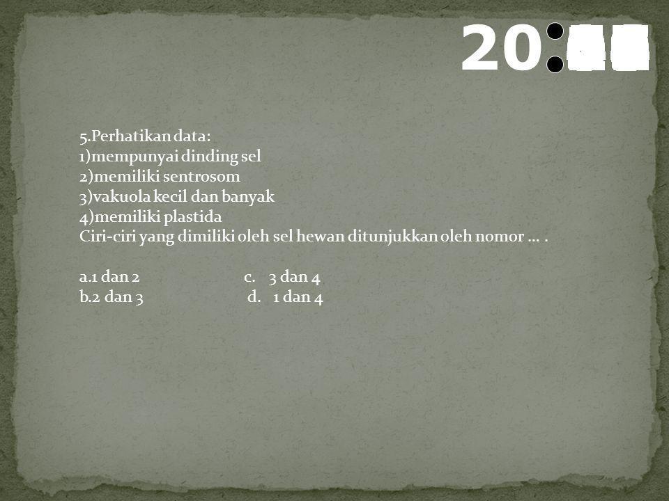 21 595857565554535251504948474645444342414039383736353433323130292827262524232221201918171615141312111009080706050403020100 4.Berikut ini merupakan ja