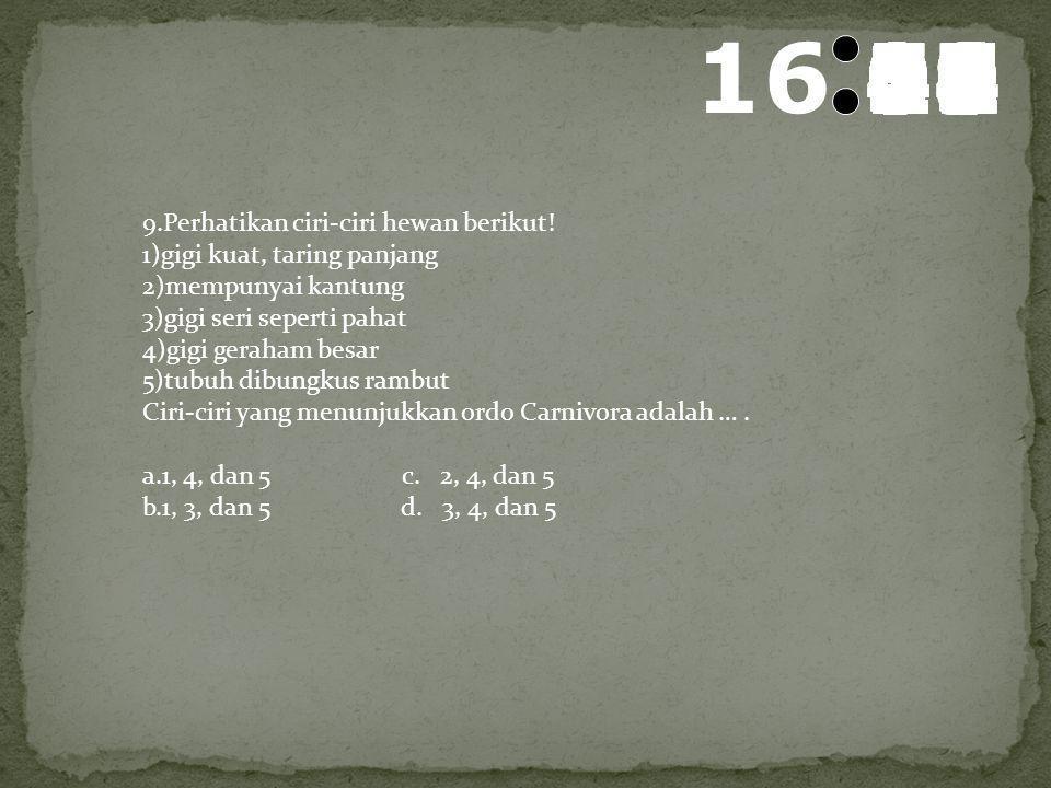 17 595857565554535251504948474645444342414039383736353433323130292827262524232221201918171615141312111009080706050403020100 8.Berikut adalah ciri-ciri
