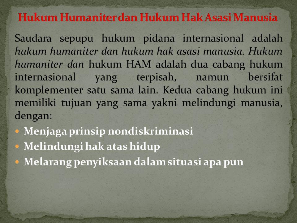 Saudara sepupu hukum pidana internasional adalah hukum humaniter dan hukum hak asasi manusia.