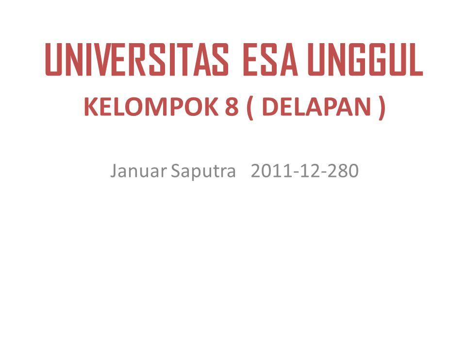 UNIVERSITAS ESA UNGGUL KELOMPOK 8 ( DELAPAN ) Januar Saputra 2011-12-280
