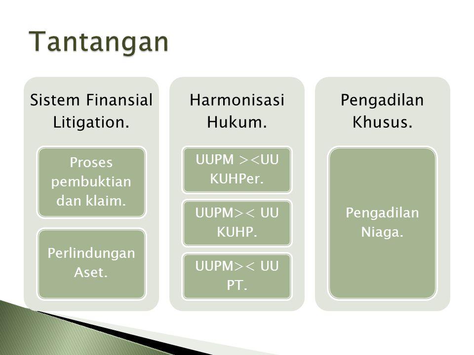 Sistem Finansial Litigation. Proses pembuktian dan klaim. Perlindungan Aset. Harmonisasi Hukum. UUPM ><UU KUHPer. UUPM>< UU KUHP. UUPM>< UU PT. Pengad