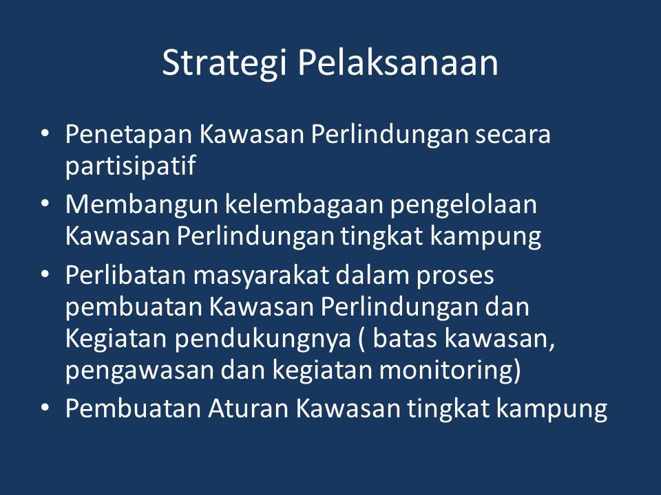 Strategi Pelaksanaan Penetapan Kawasan Perlindungan secara partisipatif Membangun kelembagaan pengelolaan Kawasan Perlindungan tingkat kampung Perliba