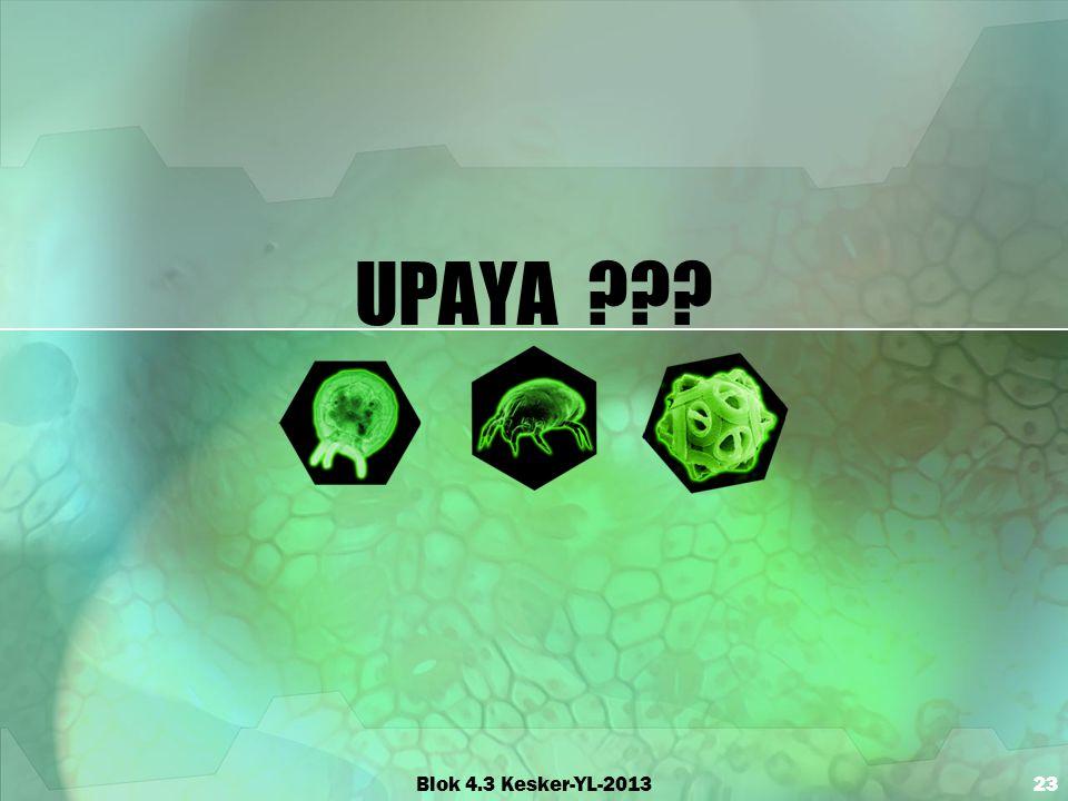 UPAYA ??? Blok 4.3 Kesker-YL-201323
