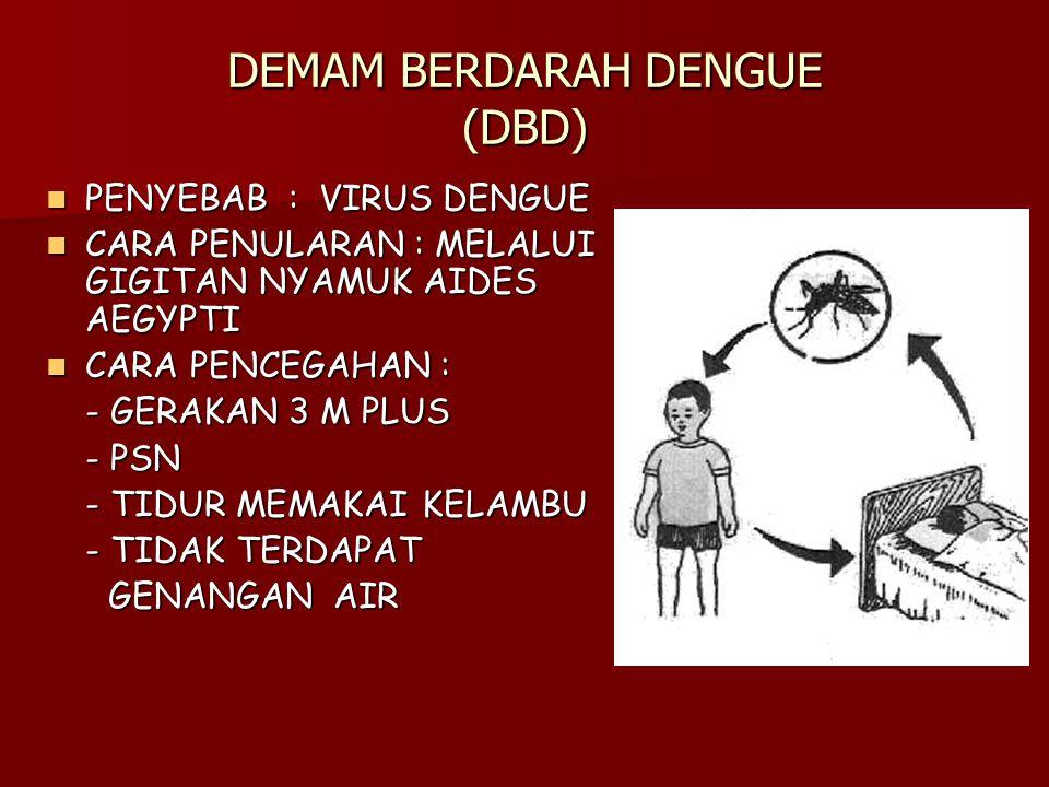 DEMAM BERDARAH DENGUE (DBD) PENYEBAB : VIRUS DENGUE PENYEBAB : VIRUS DENGUE CARA PENULARAN : MELALUI GIGITAN NYAMUK AIDES AEGYPTI CARA PENULARAN : MELALUI GIGITAN NYAMUK AIDES AEGYPTI CARA PENCEGAHAN : CARA PENCEGAHAN : - GERAKAN 3 M PLUS - PSN - TIDUR MEMAKAI KELAMBU - TIDAK TERDAPAT GENANGAN AIR GENANGAN AIR