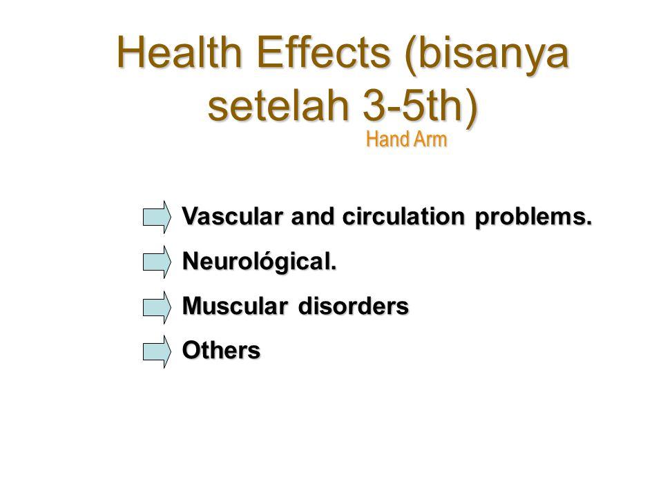 Health Effects (bisanya setelah 3-5th) Hand Arm Vascular and circulation problems.