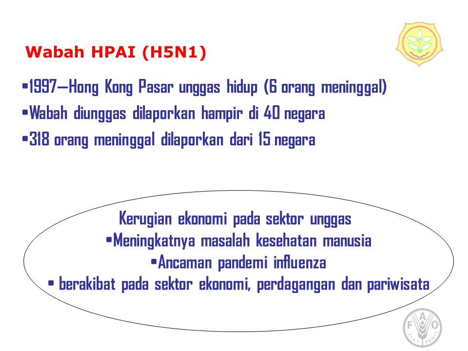 Wabah HPAI (H5N1) 1997—Hong Kong Pasar unggas hidup (6 orang meninggal) Wabah diunggas dilaporkan hampir di 40 negara 318 orang meninggal dilaporkan d