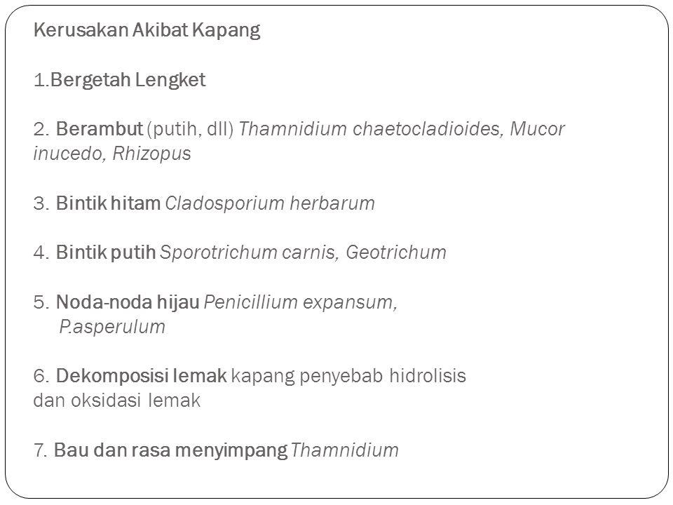 Kerusakan Akibat Kapang 1.Bergetah Lengket 2. Berambut (putih, dll) Thamnidium chaetocladioides, Mucor inucedo, Rhizopus 3. Bintik hitam Cladosporium