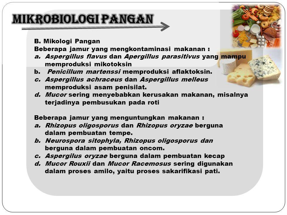 B. Mikologi Pangan Beberapa jamur yang mengkontaminasi makanan : a.Aspergillus flavus dan Apergillus parasitivus yang mampu memproduksi mikotoksin b.