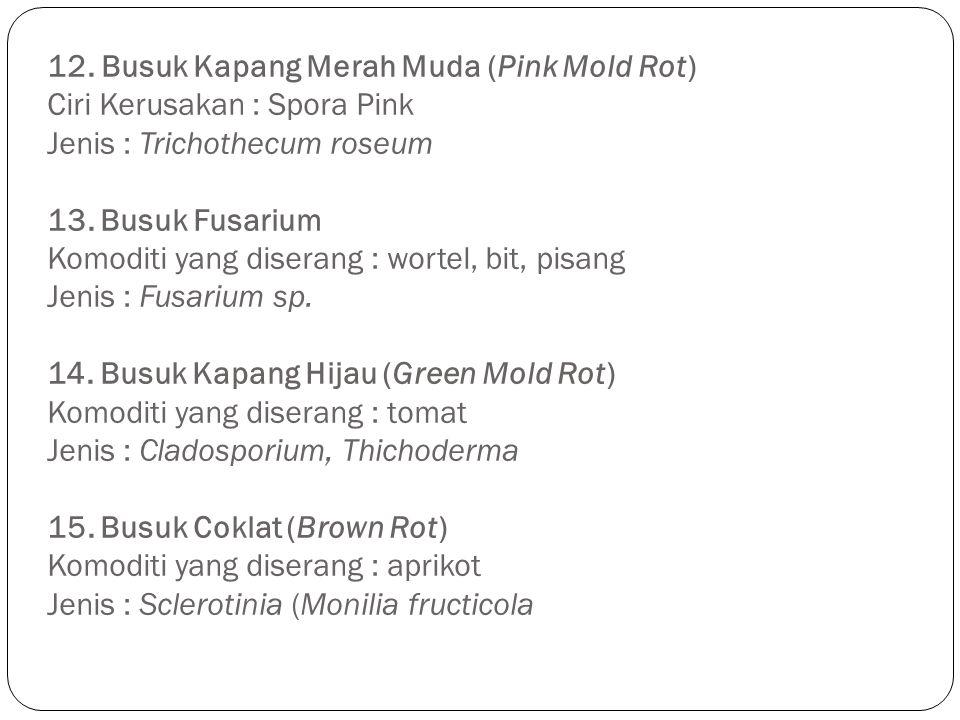 12. Busuk Kapang Merah Muda (Pink Mold Rot) Ciri Kerusakan : Spora Pink Jenis : Trichothecum roseum 13. Busuk Fusarium Komoditi yang diserang : wortel