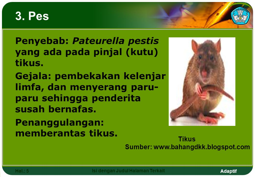 Adaptif Hal.: 5 Isi dengan Judul Halaman Terkait Penyebab: Pateurella pestis yang ada pada pinjal (kutu) tikus. Gejala: pembekakan kelenjar limfa, dan