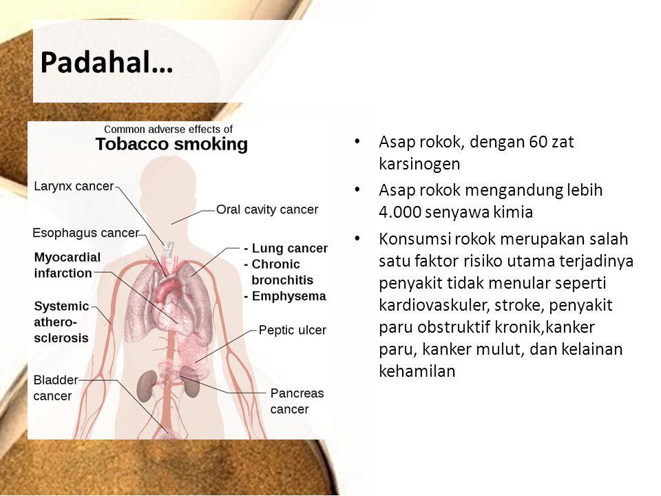 Padahal… Asap rokok, dengan 60 zat karsinogen Asap rokok mengandung lebih 4.000 senyawa kimia Konsumsi rokok merupakan salah satu faktor risiko utama terjadinya penyakit tidak menular seperti kardiovaskuler, stroke, penyakit paru obstruktif kronik,kanker paru, kanker mulut, dan kelainan kehamilan
