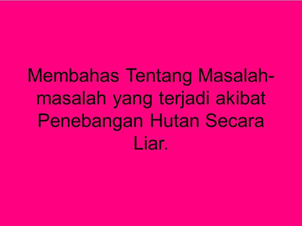 - Akibat @Bukit lawang