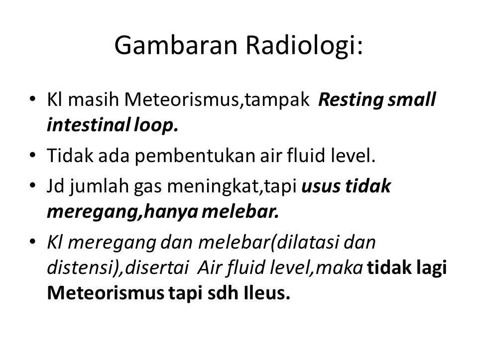 Gambaran Radiologi: Kl masih Meteorismus,tampak Resting small intestinal loop. Tidak ada pembentukan air fluid level. Jd jumlah gas meningkat,tapi usu