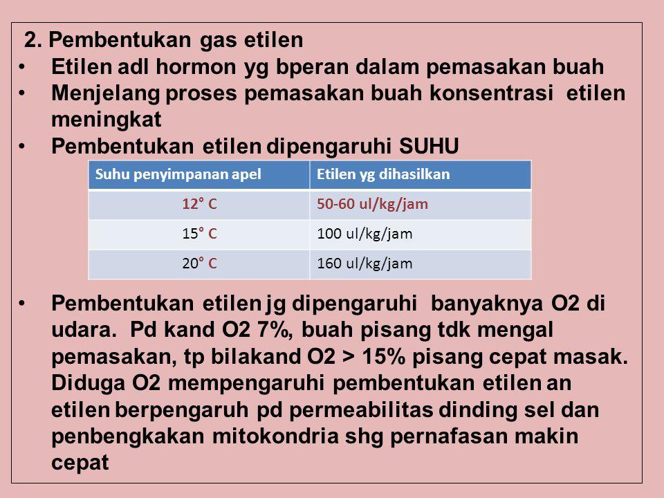 2. Pembentukan gas etilen Etilen adl hormon yg bperan dalam pemasakan buah Menjelang proses pemasakan buah konsentrasi etilen meningkat Pembentukan et