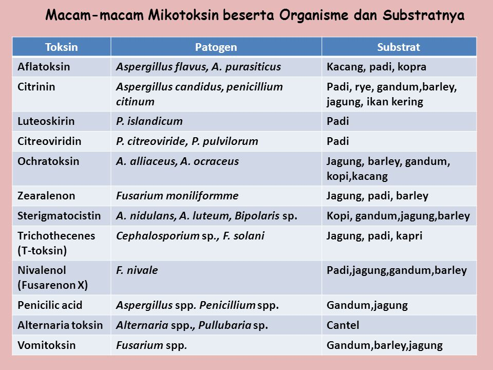 ToksinPatogenSubstrat AflatoksinAspergillus flavus, A. purasiticusKacang, padi, kopra CitrininAspergillus candidus, penicillium citinum Padi, rye, gan