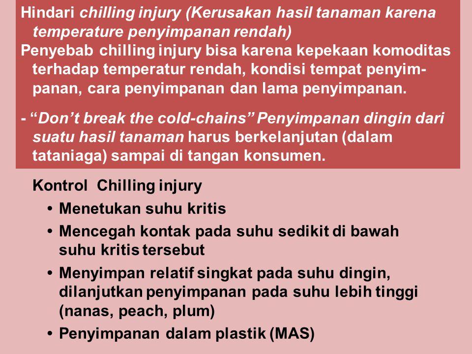 Kontrol Chilling injury Menetukan suhu kritis Mencegah kontak pada suhu sedikit di bawah suhu kritis tersebut Menyimpan relatif singkat pada suhu ding