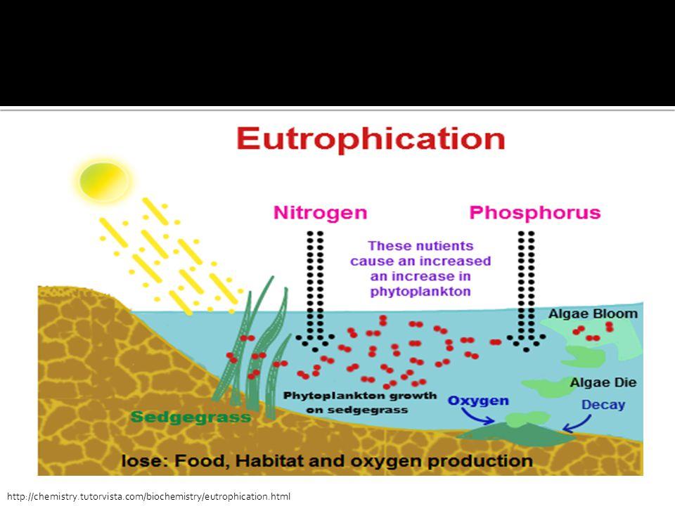http://chemistry.tutorvista.com/biochemistry/eutrophication.html