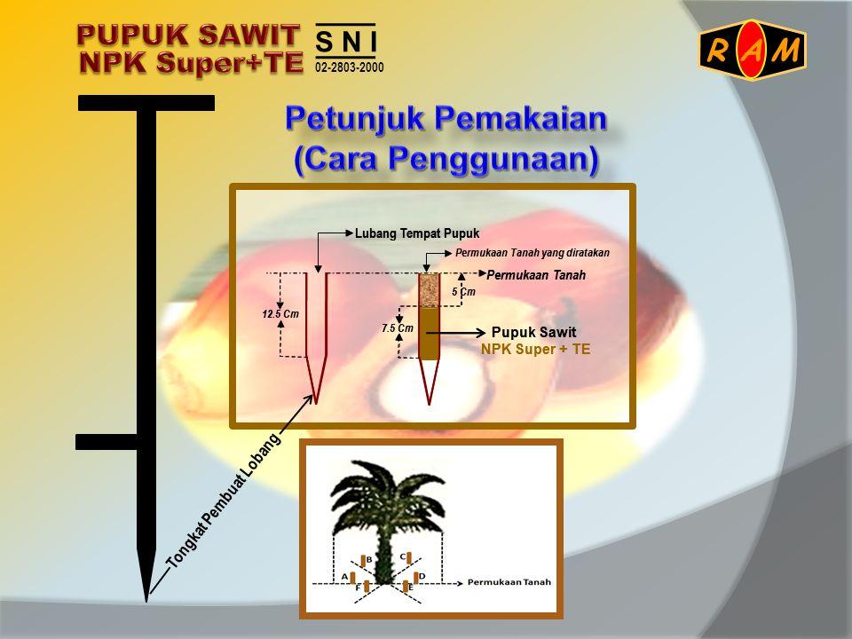 Pupuk Sawit NPK Super + TE Permukaan Tanah yang diratakan Permukaan Tanah Lubang Tempat Pupuk 7.5 Cm 12.5 Cm 5 Cm Pupuk Sawit NPK Super + TE Permukaan