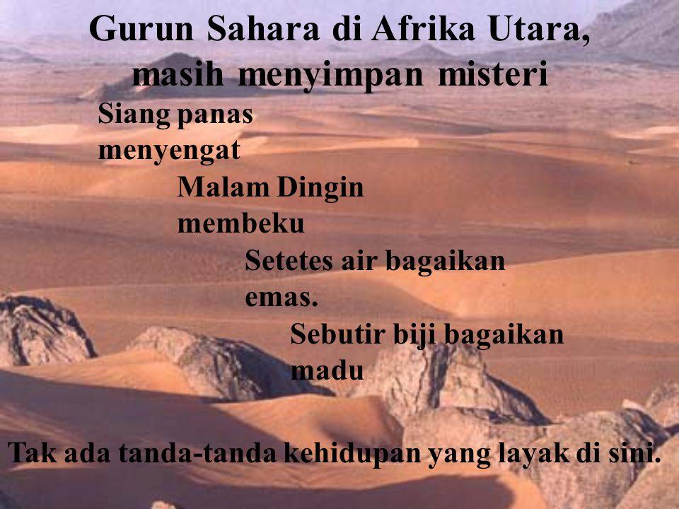 Gurun Sahara di Afrika Utara, masih menyimpan misteri Siang panas menyengat Malam Dingin membeku Setetes air bagaikan emas.