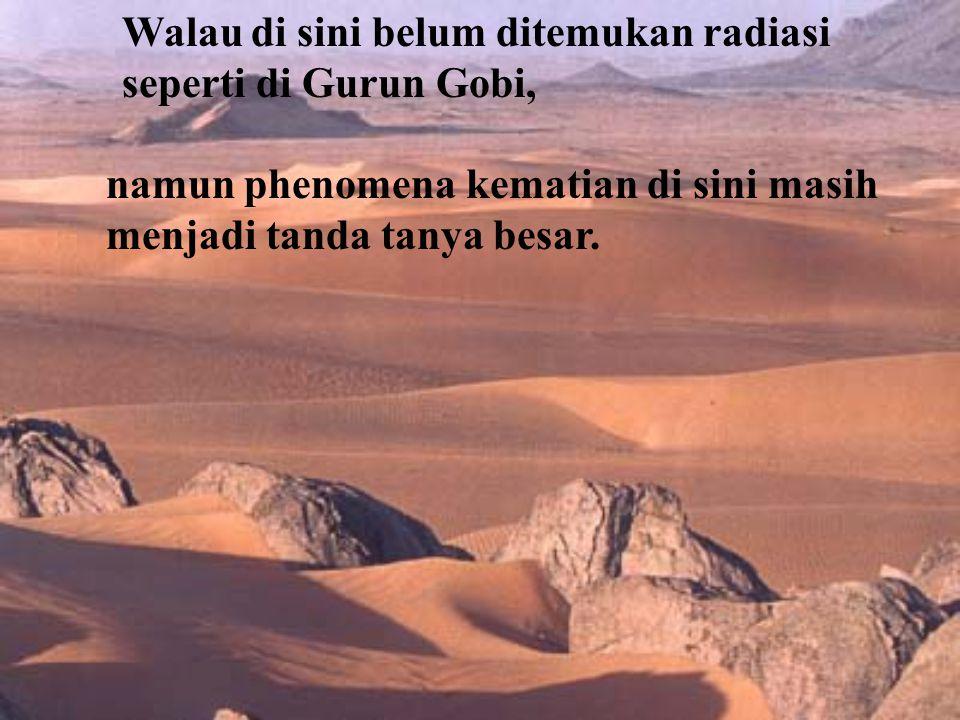 Walau di sini belum ditemukan radiasi seperti di Gurun Gobi, namun phenomena kematian di sini masih menjadi tanda tanya besar.