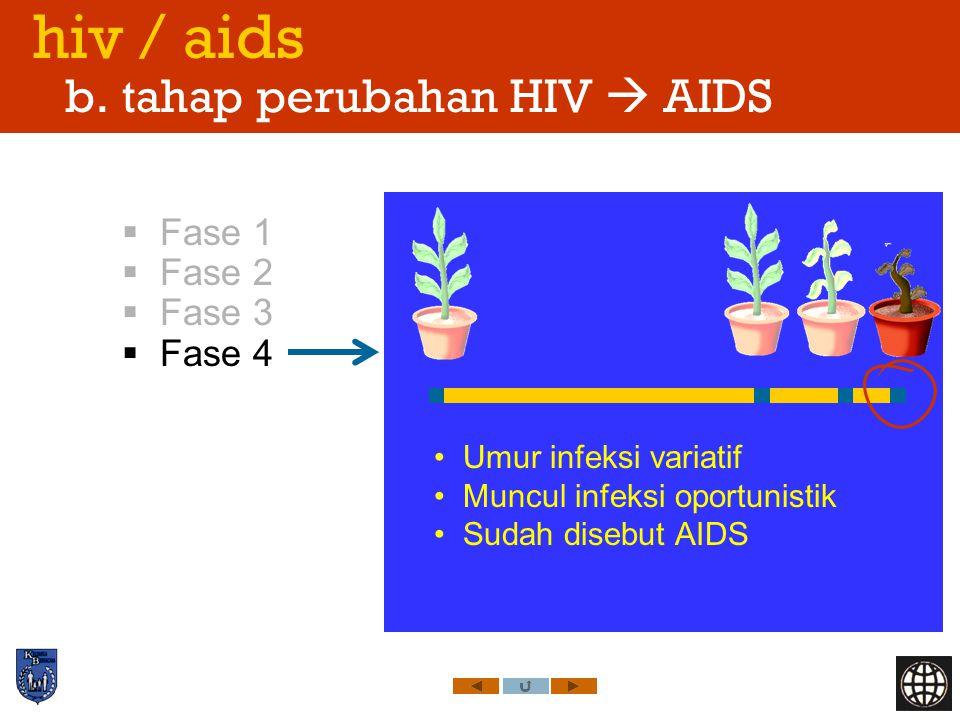 hiv / aids b. tahap perubahan HIV  AIDS  Fase 1  Fase 2  Fase 3  Fase 4 Umur infeksi variatif Muncul infeksi oportunistik Sudah disebut AIDS