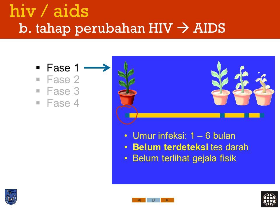 hiv / aids b. tahap perubahan HIV  AIDS  Fase 1  Fase 2  Fase 3  Fase 4 Umur infeksi: 1 – 6 bulan Belum terdeteksi tes darah Belum terlihat gejal