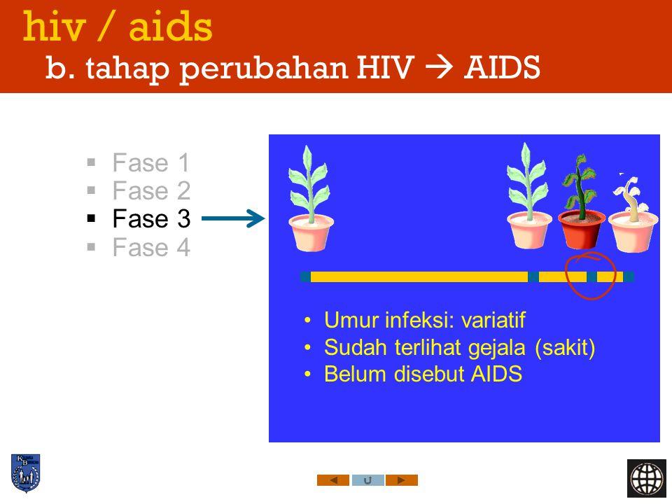 hiv / aids b. tahap perubahan HIV  AIDS  Fase 1  Fase 2  Fase 3  Fase 4 Umur infeksi: variatif Sudah terlihat gejala (sakit) Belum disebut AIDS