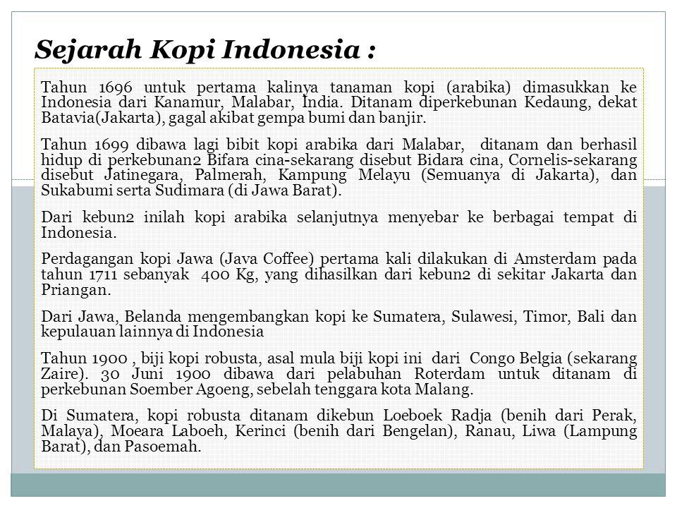 Sejarah Kopi Indonesia : Tahun 1696 untuk pertama kalinya tanaman kopi (arabika) dimasukkan ke Indonesia dari Kanamur, Malabar, India.