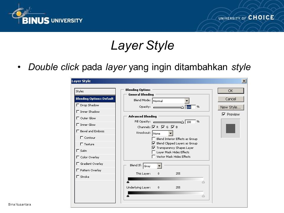 Bina Nusantara Layer Style Double click pada layer yang ingin ditambahkan style