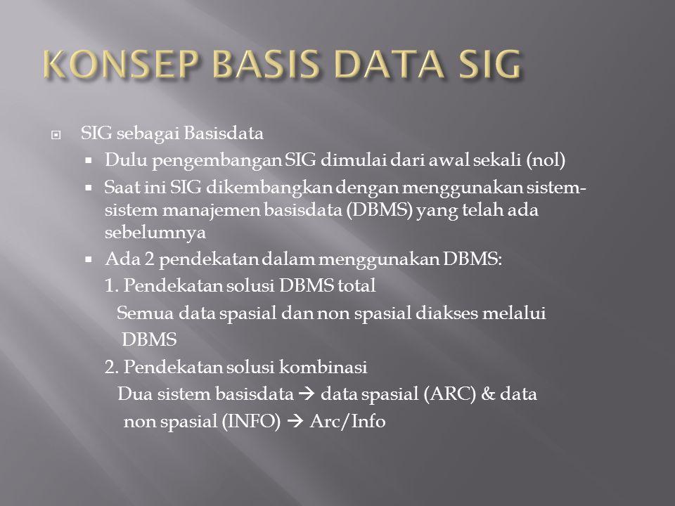  SIG sebagai Basisdata  Dulu pengembangan SIG dimulai dari awal sekali (nol)  Saat ini SIG dikembangkan dengan menggunakan sistem- sistem manajemen basisdata (DBMS) yang telah ada sebelumnya  Ada 2 pendekatan dalam menggunakan DBMS: 1.