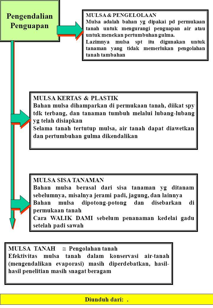 Pengendalian Penguapan MULSA & PENGELOLAAN Mulsa adalah bahan yg dipakai pd permukaan tanah untuk mengurangi penguapan air atau untuk menekan pertumbu