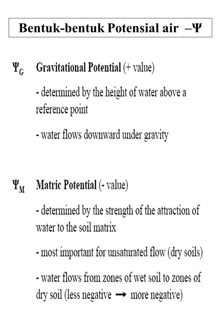 48 Bentuk-bentuk Potensial air –Ψ